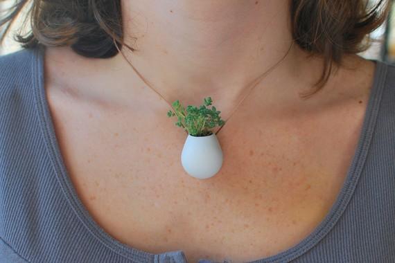 collana di piante