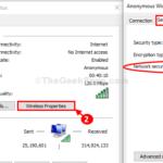 Disabilita la visualizzazione della password WiFi dal campo Chiave di sicurezza in Windows 10