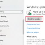 Correggi l'errore del file system -2147219196 in Windows 10