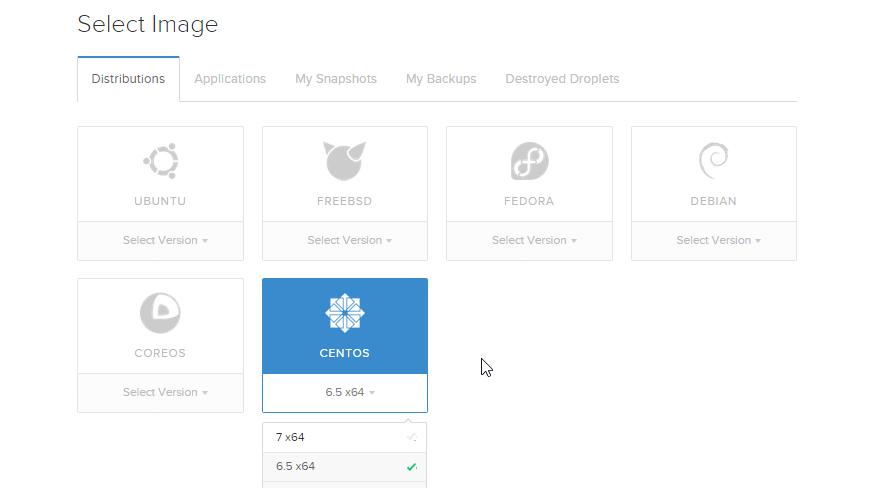 scegli il sistema operativo del server
