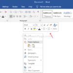 Come rimuovere la mini barra degli strumenti del pulsante destro del mouse da Word