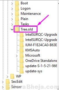 Vecchio albero 1