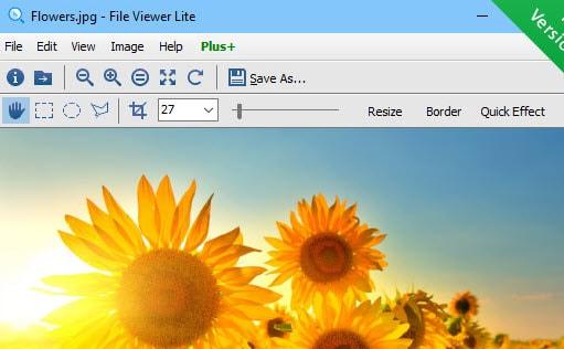Visualizzatore file min