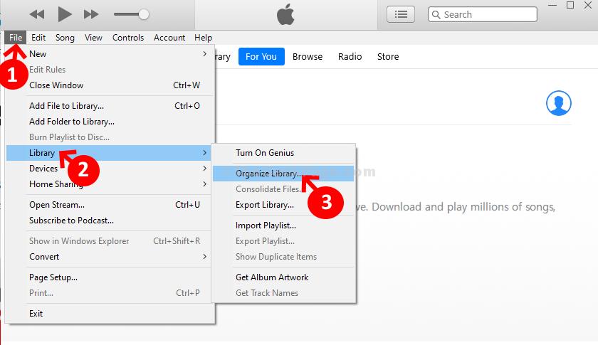 Libreria di file di iTunes