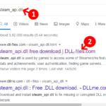 Errore della DLL di Steam Api in Windows 10